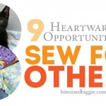 9 Amazing Sewing Service Projects