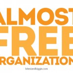 Almost Free Organization Ideas!