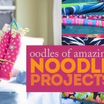 Oodles of Amazing Noodle Projects!
