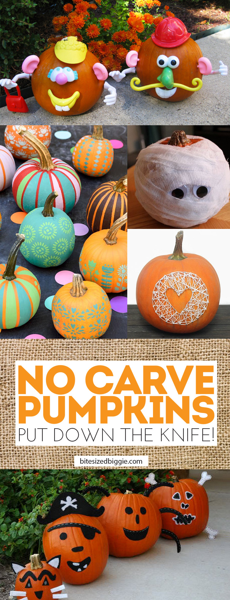 No carve pumpkins - PUT DOWN THAT KNIFE! Hahahaha!