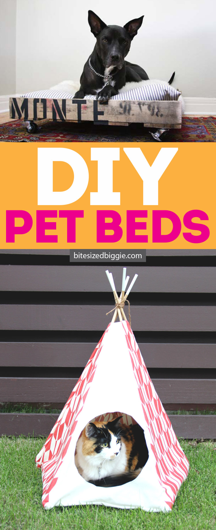 DIY cat and dog bed ideas - So many fun ones in this post!