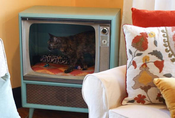 cat bed inside tv console