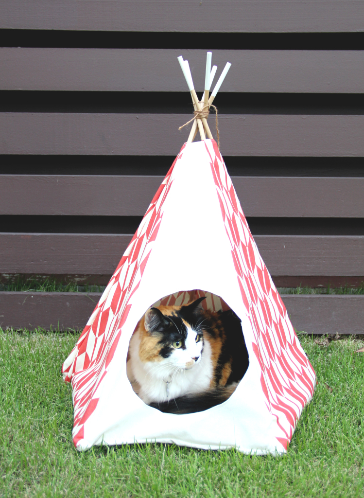 cat bed tee pee