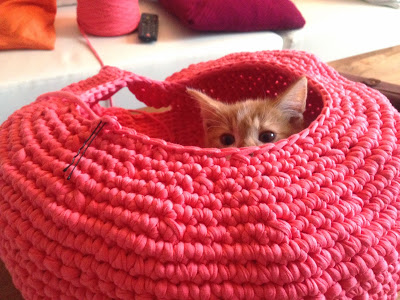 crocheted cat nest free tutorial