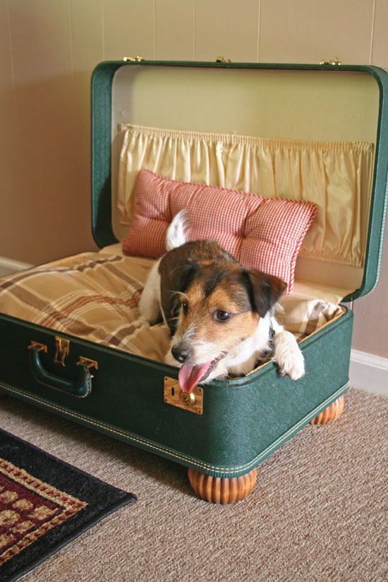 suitcase-dog-bed jpg