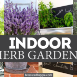 How to Grow MORE Herbs Indoors