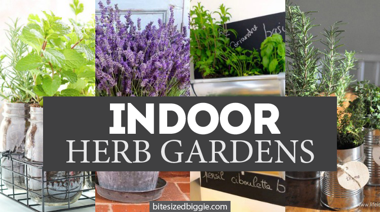 weve now rounded up a whole new crop of herb gardening tips and ideas - Indoor Herb Garden Ideas
