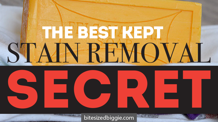 The best kept stain removal secret - who knew $2 could work so well?!?