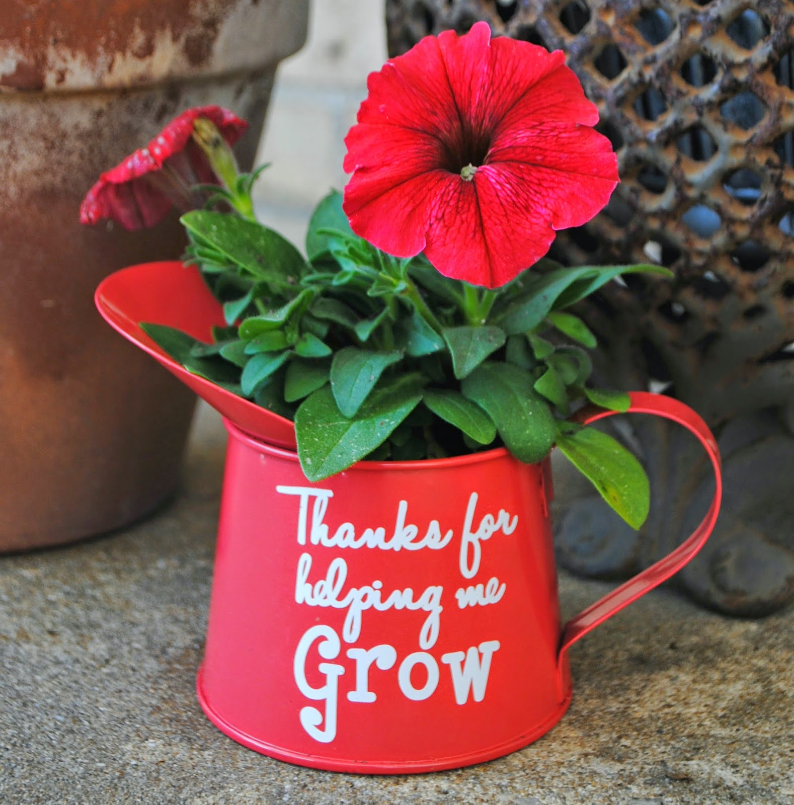 watering can as flower pot teacher thanks