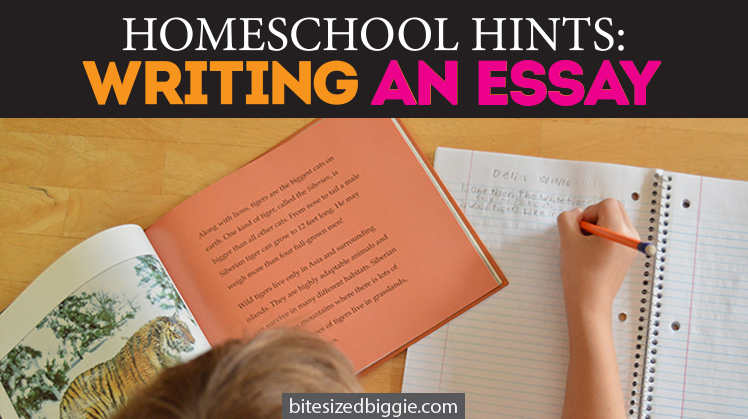 essay about disadvantages of homeschooling Open document below is an essay on the disadvantages of homeschooling from anti essays, your source for research papers, essays, and term paper examples.