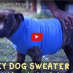 DIY Dog Sweater for ANY Sized Pooch