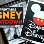 Magically Easy DIY Disney Countdown
