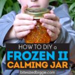 Frozen II Enchanted Forest Calming Jar