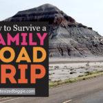 Road Trip Survival Tips