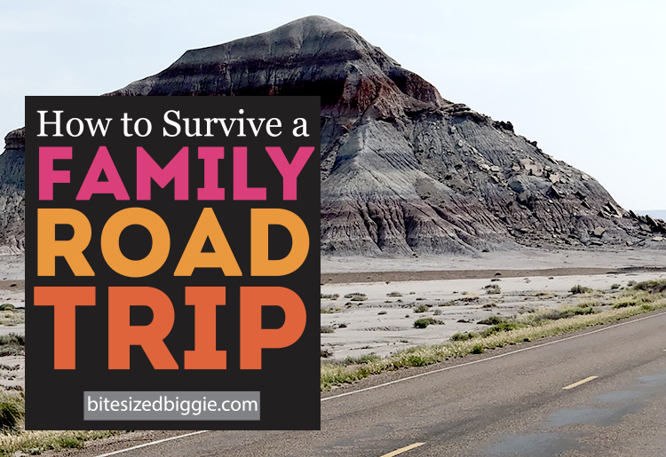 Featured image for road trip survival tips on bitesizedbiggie.com